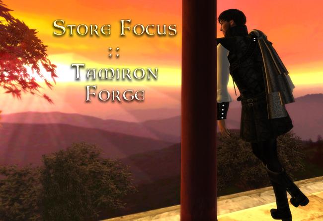 Store Focus: Tamiron Forge
