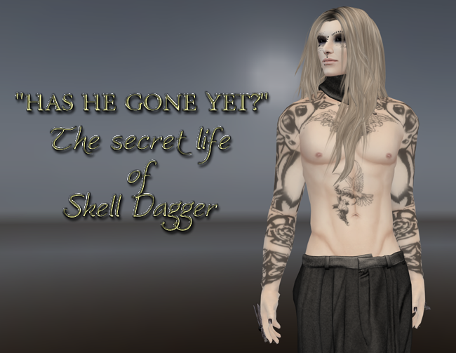 The Secret Diary of Skell Dagger, Aged Seven and a Quarter