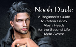 Noob Dude: A beginner's guide to Catwa Bento mesh heads for the Second Life male avatar