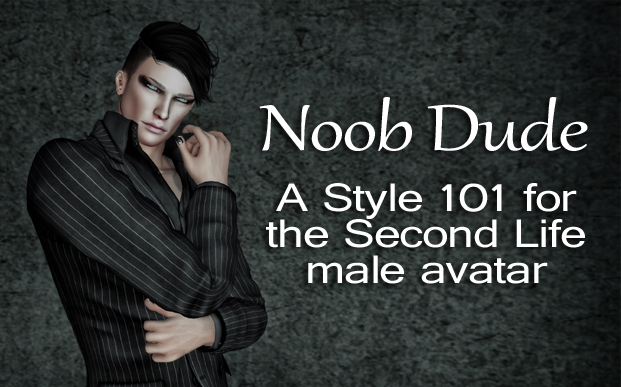 Noob Dude: A Style 101 for the Second Life Male Avatar – Part 1 – The Absolute Basics of the System Avatar