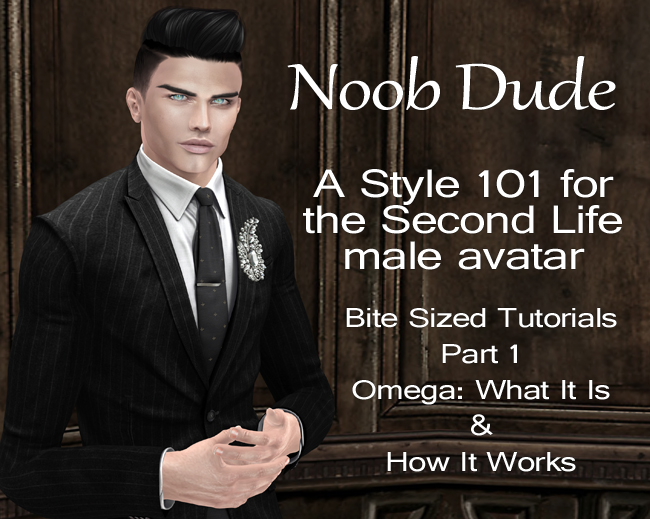 Noob Dude: Bite Sized Tutorials Part 1 – Omega: What It Is & How It Works