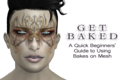 Get Baked – A Quick Beginners' Guide to Using Bakes on Mesh