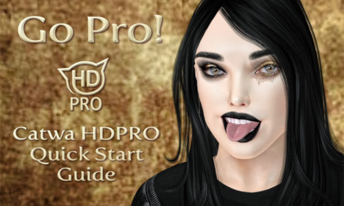 Go Pro! – Catwa HDPRO Quick Start Guide