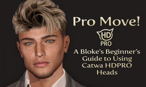 Pro Move! – A Bloke's Beginner's Guide to using Catwa HDPRO Heads